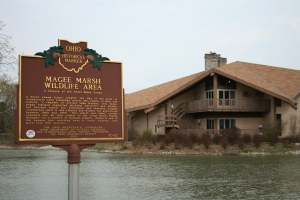 Magee Marsh Wildlife Area in Oak Harbor, Ohio.